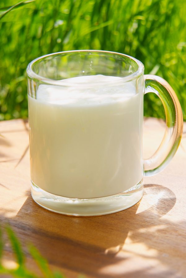 Йогурт классический натуральный из цельного молока