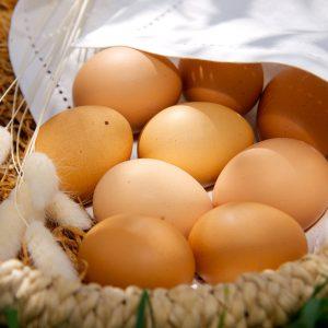 яйца куриные деревенские